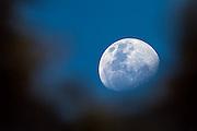 Moon over Rwanda   Månen over Rwanda