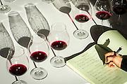 Penner-Ash Wine tasting, Willamette Valley, Oregon