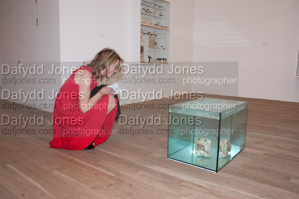 SARAH BRAKA, Damien Hirst, Tate Modern: dinner. 2 April 2012.