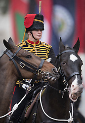 © Licensed to London News Pictures. 28/05/2016. London, UK. The King's Troop Royal Horse Artillery take part in The Major's General's Review on The Mall. Hundreds of troops are taking part in the first of two rehearsals for the Trooping the Colour ceremony, the Queen's annual birthday parade. Photo credit: Peter Macdiarmid/LNP