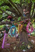 A love tree in the faraway Forest - The 2017 Latitude Festival, Henham Park. Suffolk 15 July 2017