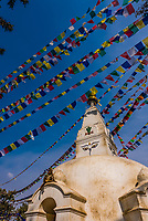 A macaque monkey rests atop a small stupa at the Swayambhunath Temple. The temple sits atop a hill west of Kathmandu, Nepal.