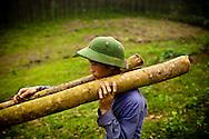 A young vietnamese man carries lumber, Yen Bai Province, Vietnam, Southeast Asia