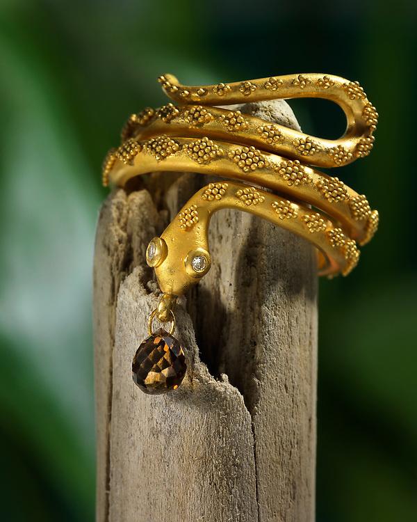 snake ring in environment