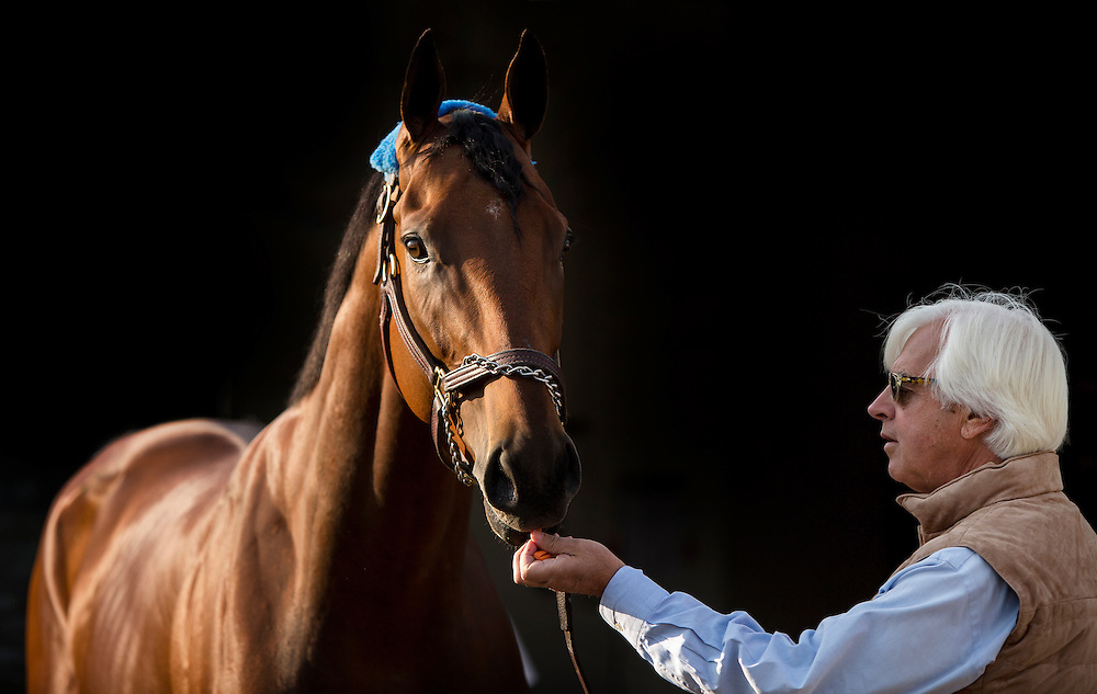 May 03, 2015: Trianer, Bob Baffert bringsAmerican Pharaoh to visit fans ant a viewing of the Kentucky Derby winner  at Churchill Downs Louisville Ky. Alex Evers/ESW/CSM