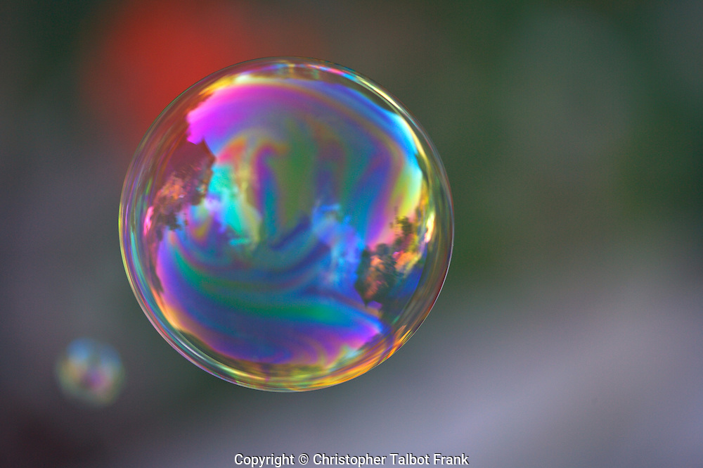 I shot over a thousand photos of a floating rainbow bubble in order to get just the right shot.  This perfect children's bubble images has  all the vivid colors of a rainbow.