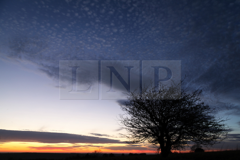 © Licensed to London News Pictures. 15/03/2014. Hampshire, UK. Sunset over the South Downs National Park this evening, 15th March 2014. Photo credit : Rob Arnold/LNP