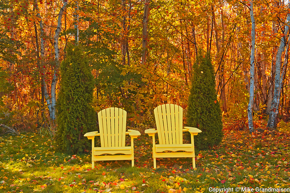 Muskoka Chairs and autumn colors<br />