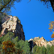 Rocks framed by fall color - Oak Creek Canyon, AZ