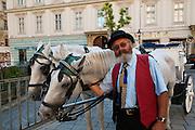 Fiaker, Kutscher, Wien, Österreich .|.Fiaker (horse carriage), coachman, Vienna, Austria..