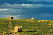 bales and coming storm<br /> near Grasslands National Park<br /> Saskatchewan<br /> Canada