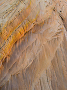 Sandstone crossbedding in the area of  The Wave, Vermilion Cliffs National Monument, Arizona.