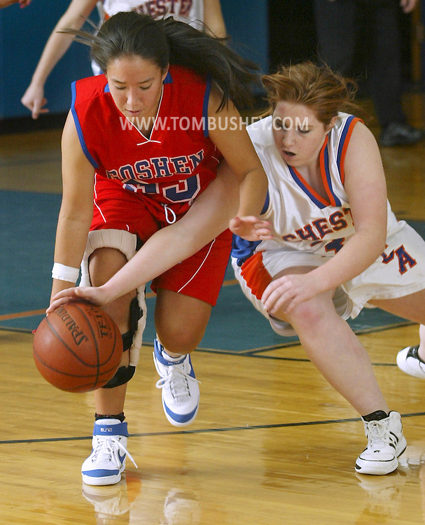 Chester's Teresa DeAngelis, right, tries to knock the ball away from Goshen's Carly Jung during a game at S.S. Seward in Florida on Nov. 28, 2007.