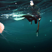 "Bryan Heron tries to avoid the long tentacles of jellyfish while preparing for a dive. Several minutes of breath exercises at the surface proceed each dive. ""Blood in the water - Tentacles"""