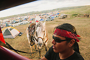 A man ties up his horse as rain begins to fall in the anti-oil pipeline protest camp near the Standing Rock Sioux reservation in Cannon Ball, North Dakota.