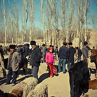 Uyghur girl dress in pink walk in the animal´s market in Kashgar, China, on February. 21, 2010. Photographer: Bernardo De Niz.
