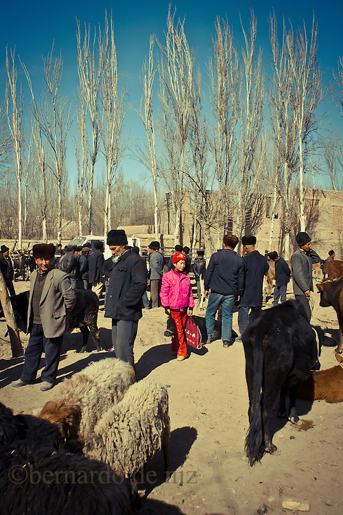 Uyghur girl dress in pink walk in the animal´s market in Kashgar, China, on February. 21, 2010. Photographer: Bernardo De Niz.