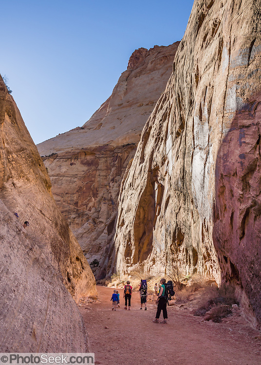 A family walks along the Capitol Gorge Trail, returning from the Tanks & Pioneer Register, in Capitol Reef National Park, Utah, USA. Capitol Gorge was the original route for travelers through Waterpocket Fold before State Route 24 cut along Fremont River.
