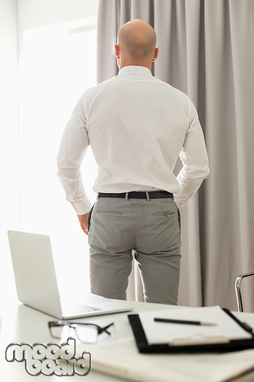 Rear view of businessman standing in home office