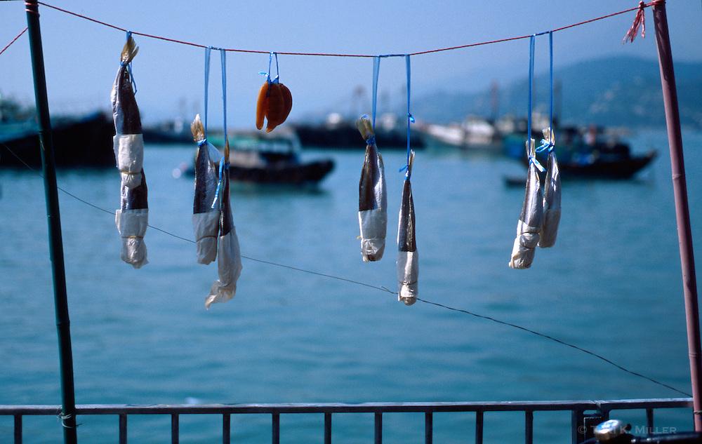 Fish drying in the sun on Cheung Chau Island, Hong Kong, China.