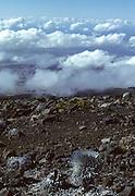 Haleakala, Haleakala Crater, Haleakala National Park, Maui, Hawaii