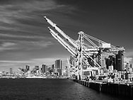 Cargo cranes in Seattle harbor in black and white