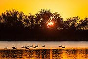 Sun rising over Sloan's Lake in Cheyenne, WY.