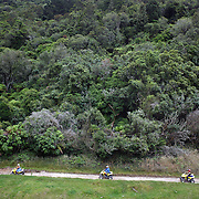 People riding through a quad bike course near Taupo with Taupo Quad Bikes. Taupo, New Zealand. 7th January 2011. Photo Tim Clayton.