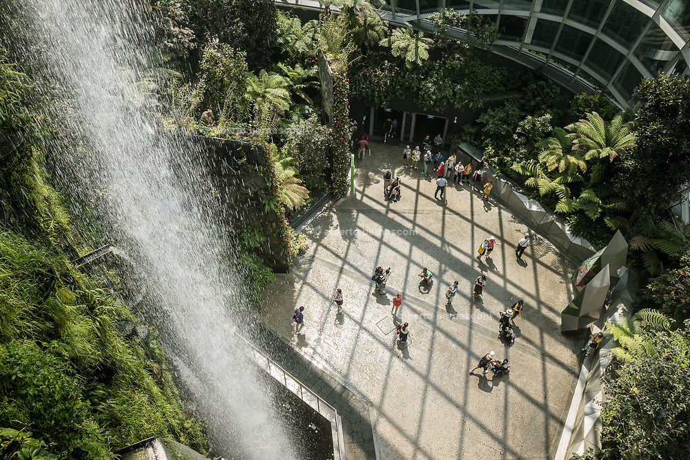 Singapore, Gardens by the Bay, Clou Forest
