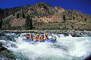 THIS PHOTO IS AVAILABLE FOR WEB DOWNLOAD ONLY. PLEASE CONTACT US FOR A LARGER PHOTO. Idaho. M.iddle Fork of the Salmon River. Rafting the rapids. Frank Church Wilderness MR