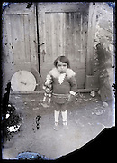 little girl posing with toy horse early 1900s on a eroding glass plate photo