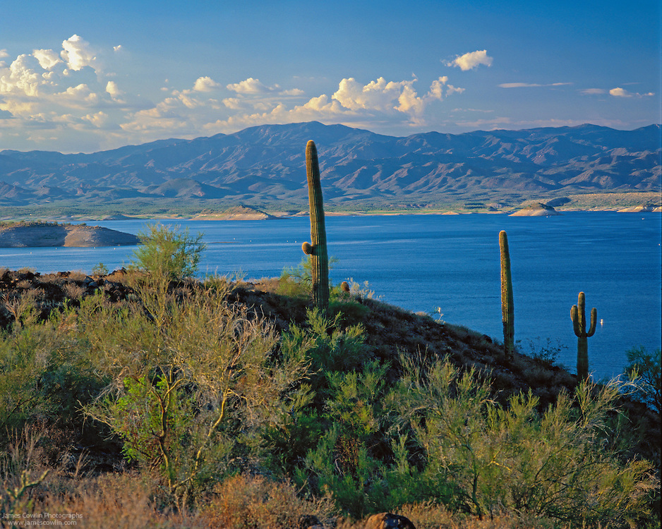 Lake pleasant arizona james cowlin photographs for Fishing lakes in arizona