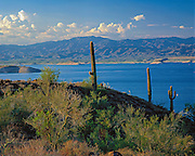 Lake Pleasant is a reservoir on the Agua Fria River in the Sonoran Desert near Phoenix, Arizona.
