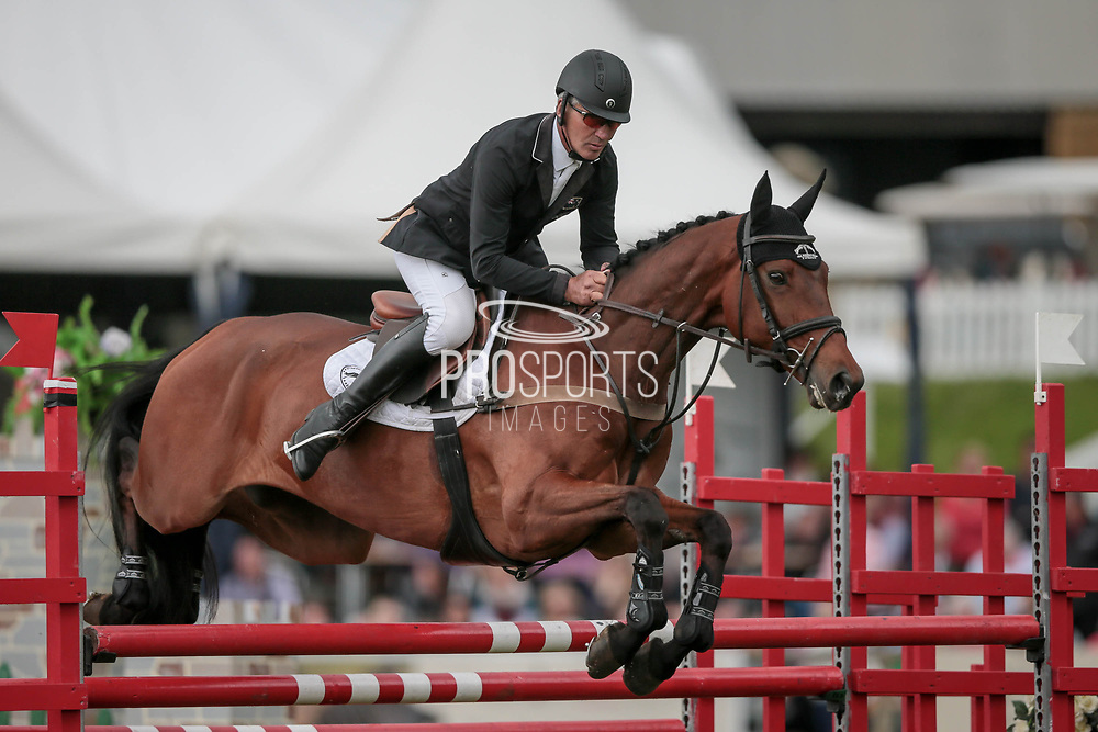 BYRNESGROVE FIRST DIAMOND ridden by Andrew Nicholson (NZL) during the Equitrek CCI*** showjumping event on day four of the Bramham International Horse Trials 2017 at  at Bramham Park, Bramham, United Kingdom on 11 June 2017. Photo by Mark P Doherty.