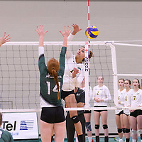 3rd year outside hitter Ashlee Sanford (1) of the Regina Cougars in action during Women's Volleyball home game on November 18 at Centre for Kinesiology, Health and Sport. Credit: /Arthur Images