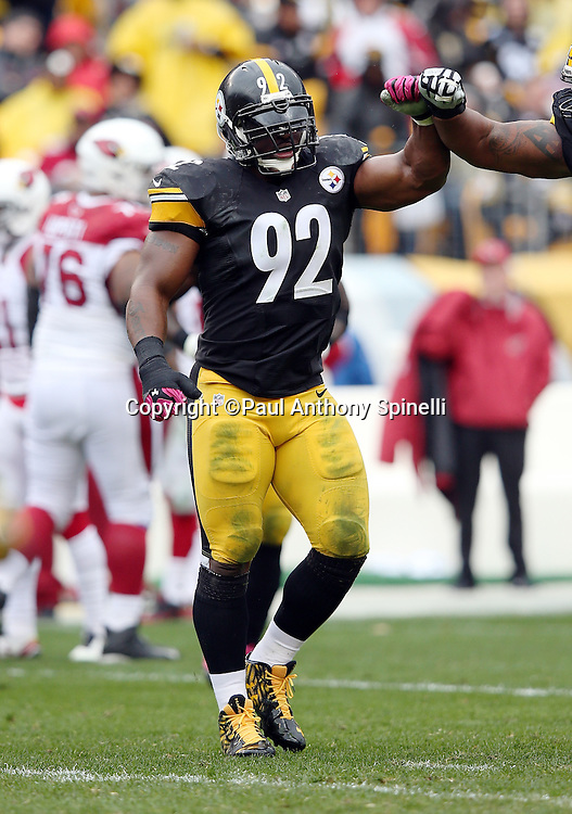 Pittsburgh Steelers outside linebacker James Harrison (92) gets a high five as he runs off the field in celebration after Pittsburgh Steelers free safety Mike Mitchell (23) recovers a third quarter fumble by the Arizona Cardinals that gives the Steelers the ball at the Cardinals 32 yard line during the 2015 NFL week 6 regular season football game against the Arizona Cardinals on Sunday, Oct. 18, 2015 in Pittsburgh. The Steelers won the game 25-13. (©Paul Anthony Spinelli)
