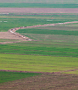 Fertile field near Halabiya Fortress, (Roman and Byzantine) by the Euphrates, Syria