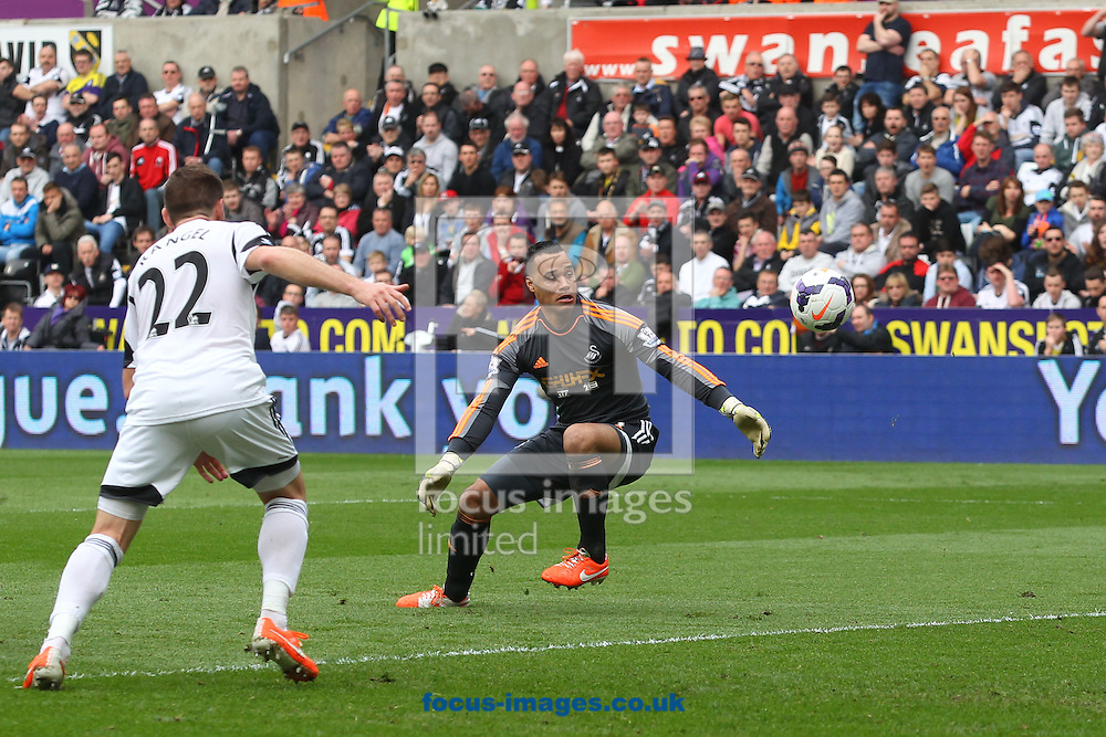 Michel Vorm of Swansea cuts out a cross but spills the ball during the Barclays Premier League match at the Liberty Stadium, Swansea<br /> Picture by Paul Chesterton/Focus Images Ltd +44 7904 640267<br /> 29/03/2014