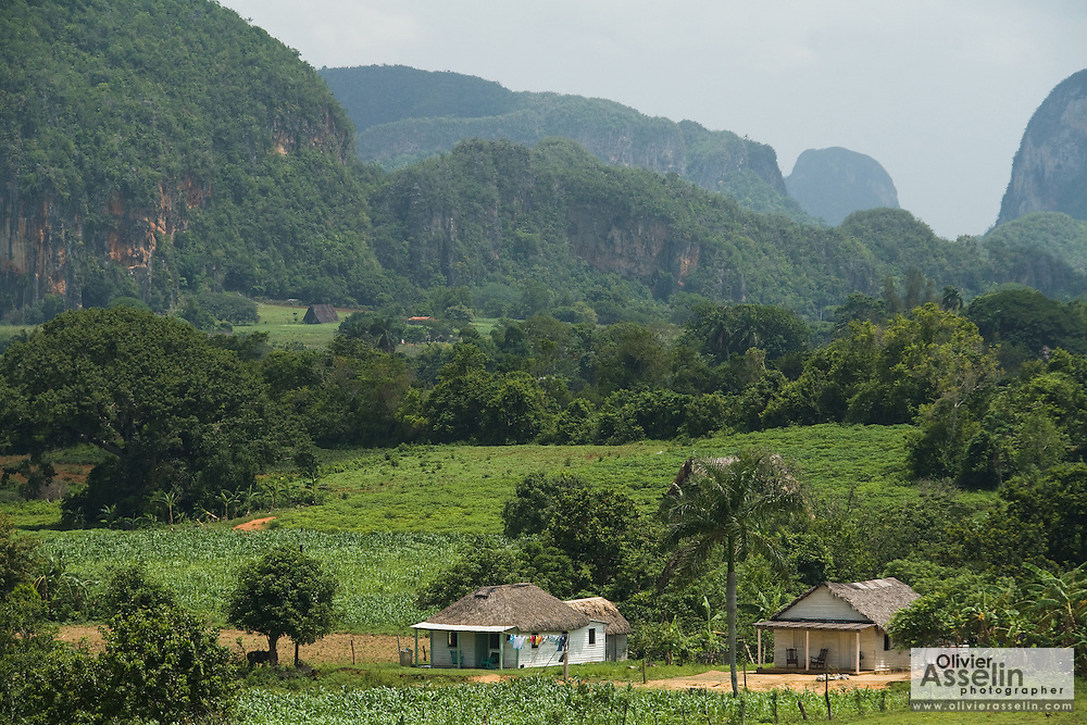 View of small houses in the valley of Vinales, Cuba.