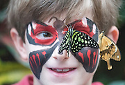 © Licensed to London News Pictures. 16/01/2015. Woking, UK .  Jay (8) Godfrey.  Children at a photocall at RHS Wisley today 16th January. Hundreds of exotic butterflies will once more be released into The Glasshouse at the Royal Horticultural Society's (RHS) Garden Wisley, in Surrey this winter from 17 January to 8 March. Visitors wandering through The Glasshouse will see butterflies such as the striking blue morpho, giant owl, king swallowtail and colourful Malay lacewing flying among the tropical plantings.. Photo credit : Stephen Simpson/LNP