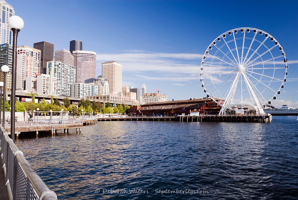The Seattle Great Wheel ferris wheel and the Waterfront Park, Alaskan Way, Seattle, USA