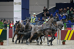 Timmerman Theo, (NED), Joep, Liss, Oosterwijk's Kasper, Quint<br /> CAI-W Leipzig 2010<br /> © Hippo Foto - Dirk Caremans