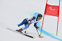 Allison Jones, Women's Giant Slalom at the 2014 Sochi Winter Paralympic Games, Russia