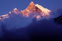 Nepal - Region des Annapurnas - Montagne du Macchapuchare