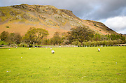 Hallin Fell, Howtown, Ullswater, Lake District national park, Cumbria, England, UK