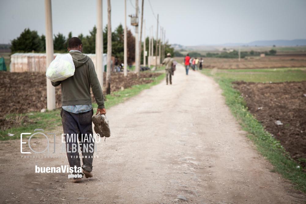 Boreano, Basilicata, Italia, 24/09/2012 <br /> Vita quotidiana a Boreano, dove in estate vivono migliaia di lavoratori stagionali impegnati nella raccolta dei pomodori nella zona dell'Alto Bradano<br /> <br /> Boreano, Basilicata, Italy, 24/09/2012 <br /> Daily life in Boreano, where thousand seasonal workers taken on tomato harvesting in the Alto-Bradano area live in summer.