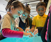 Week of the Young Child activities at the Hattie Mae White Building, April 15, 2014.