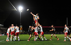 Charlie Matthew of Harlequins rises high to win lineout ball - Photo mandatory by-line: Patrick Khachfe/JMP - Mobile: 07966 386802 26/10/2014 - SPORT - RUGBY UNION - High Wycombe - Adams Park - Wasps v Harlequins - European Rugby Champions Cup