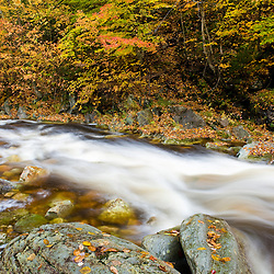 Roaring Brook in fall in Vermont's Green Mountains. Green Mountain National Forest, Sunderland, Vermont.  Batten Kill River tributary.