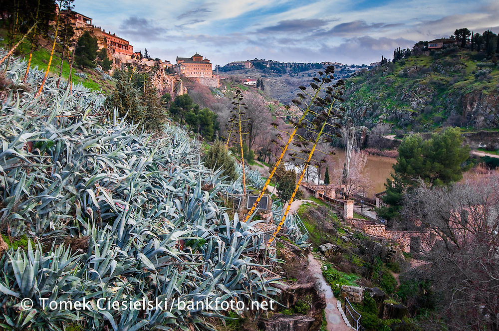 Valley of the river in Toledo